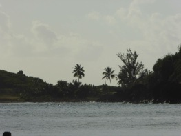 Leeward islands, setting for The Plantation House